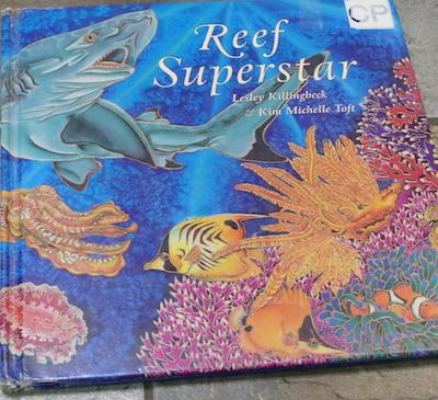 Kim Toft Reff Superstar book