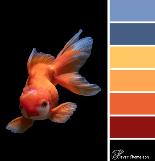 Something Fishy colour scheme by Clever Chameleon