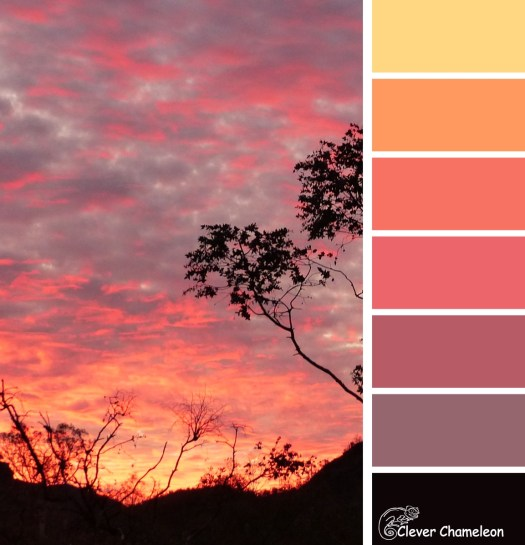 Sunset colours at Clever Chameleon