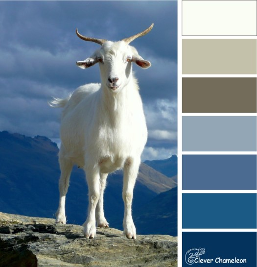 You've Goat to be Kidding Me colour board at Clever Chameleon