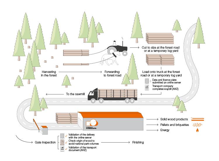 Schweighofer Holz