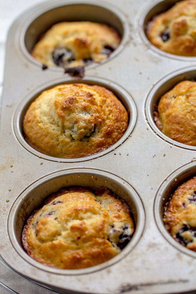 Blackberry Lemony Coconut Muffins