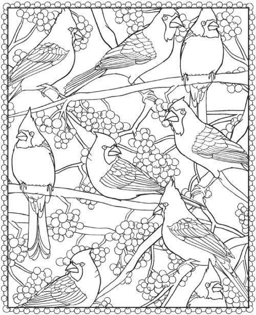 creative coloring birds art activity pages to relax and enjoy | 22+ Christmas Coloring Books to Set the Holiday Mood