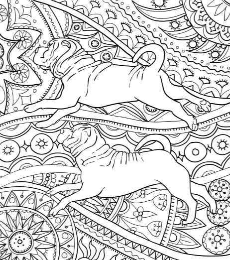 Best Coloring Books for Dog Lovers - Cleverpedia
