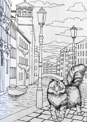 Cats In Venice Coloring Book For Adults