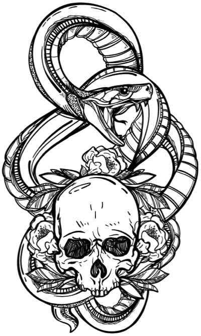 Skull coloring book for adults detailed designs for stress relief