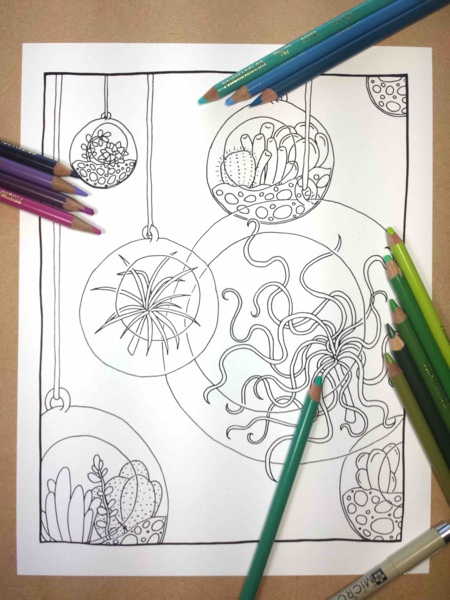 Air Plants Hanging Terrarium Coloring Page by FairytaleFoxDesigns (Print & Color)