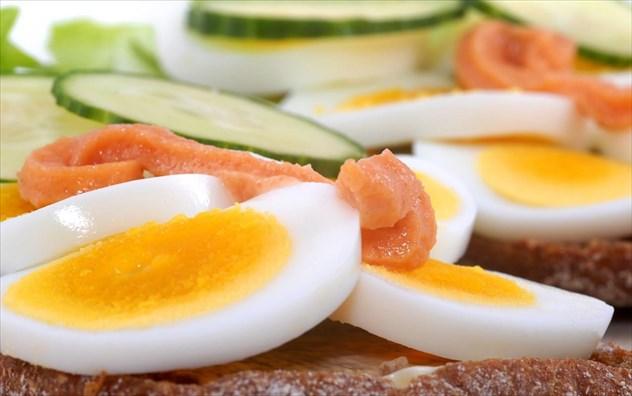 Αποτέλεσμα εικόνας για ο κροκος του αυγού α