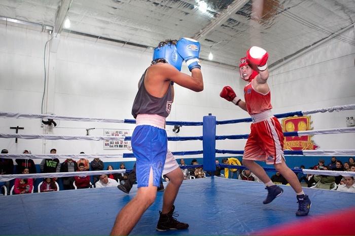 disputa de boxe bc