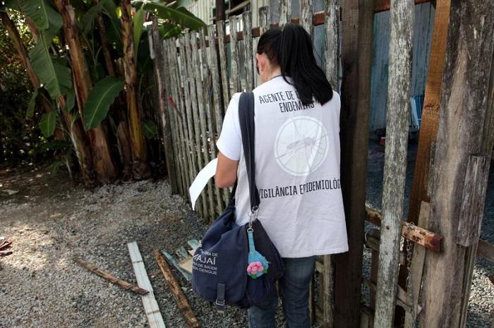 dengue itajai
