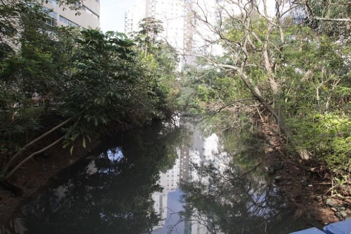 Canal do Marambaia 17 08 17 Foto Ivan Rupp 8