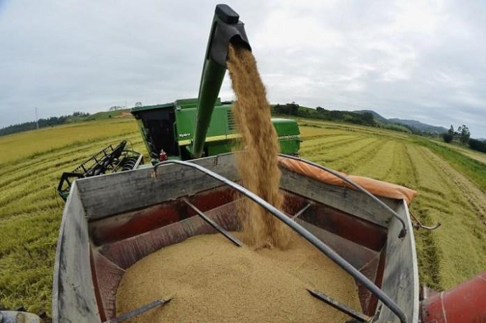 Amplia%C3%A7%C3%A3o da Secretaria de Agricultura beneficia comunidades rurais
