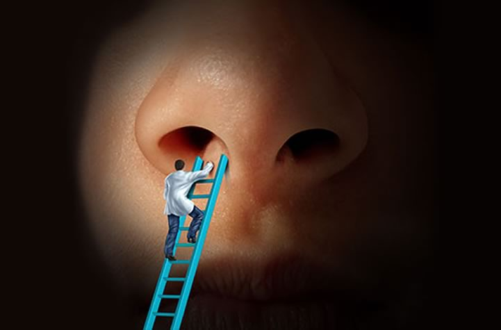 cirurgia nasal