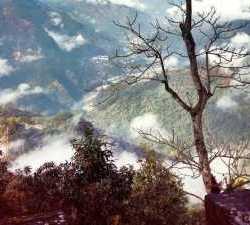 Sikkim Diaries