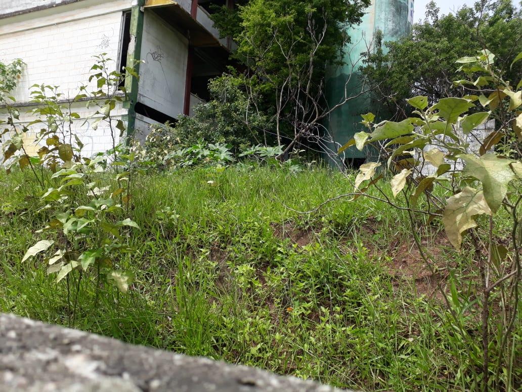 caic mangabeira clickpb 2 - RETRATO DO ABANDONO: Após quase oito anos CAIC de Mangabeira preocupa vizinhos que temem invasão