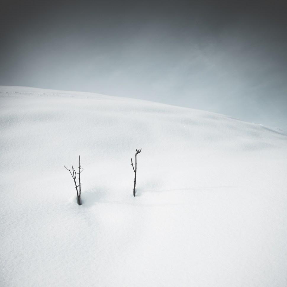 frozen-9