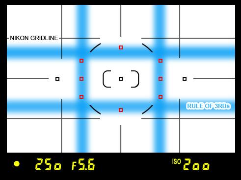 Turn on Viewfinder Grid Lines