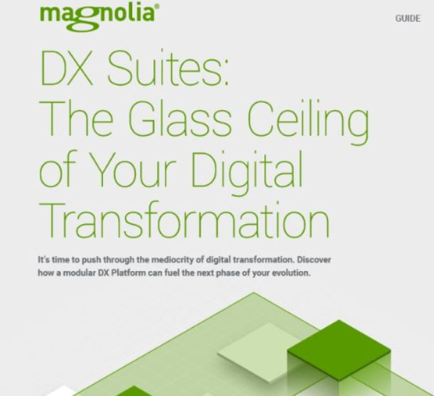 Information: A modular strategy to digital expertise platforms 1