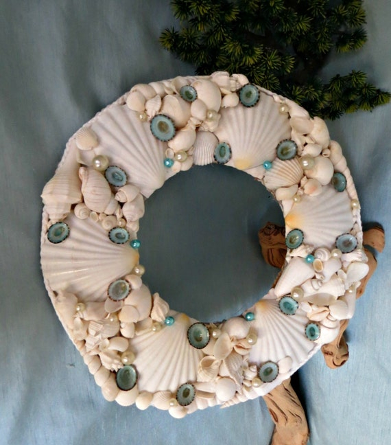 items similar to white seashell wall decor with pearls and