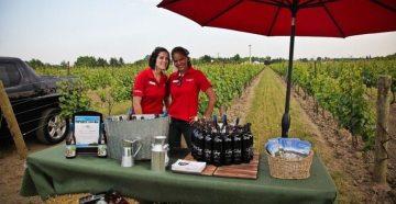 Niagara Vintage Wine Festival 2013