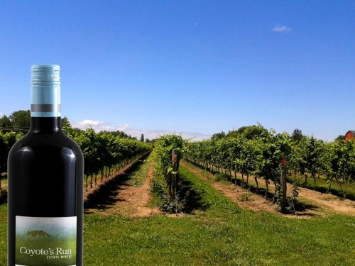 wineries of Niagara on the Lake