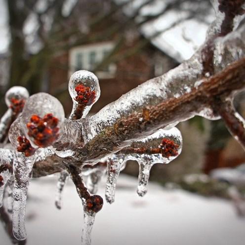 ice-storm-298337_1920