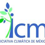 ICM logo (002)