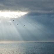 Gli aerosol marini raffreddano il clima