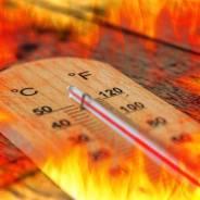 Fa caldo in Italia, ma la temperatura globale media della Terra sta calando