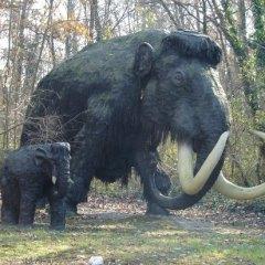 L'uomo cacciava il mammuth 13700 anni fa: la prova in una foto