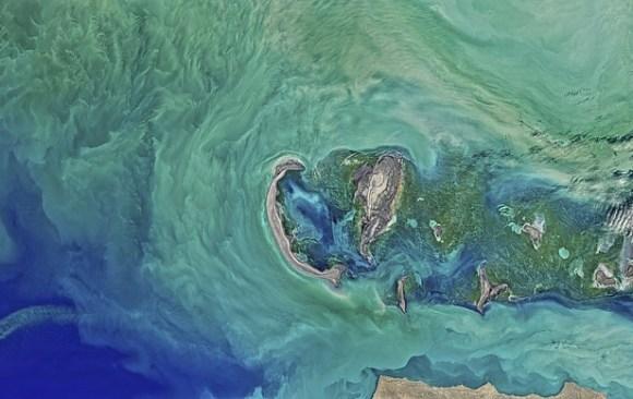 The Caspian Sea Locks Opened in the Oil Sector