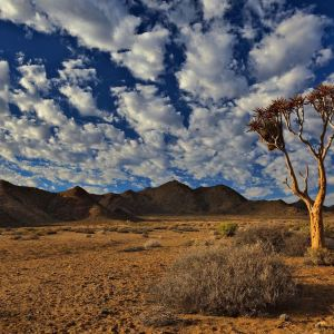 South Africa's GHG Emissions Data Lacks Consistency and Timeliness