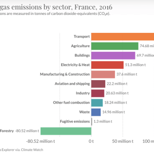 Climate Policy Recommendation for France: Ban the Sale of Gas and Diesel Cars by 2030