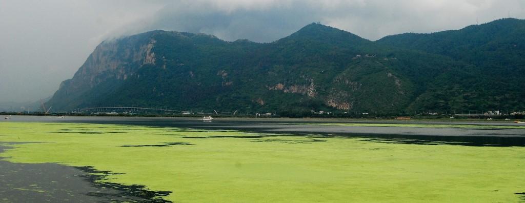 Kunming (1)