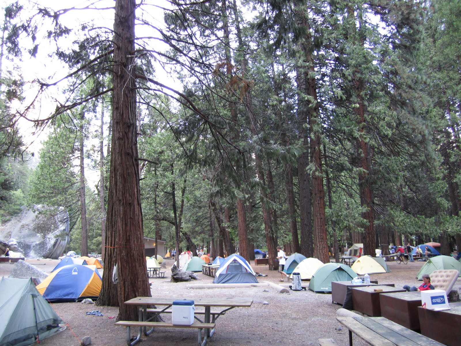 Sweetwater Campground Yosemite Reservations