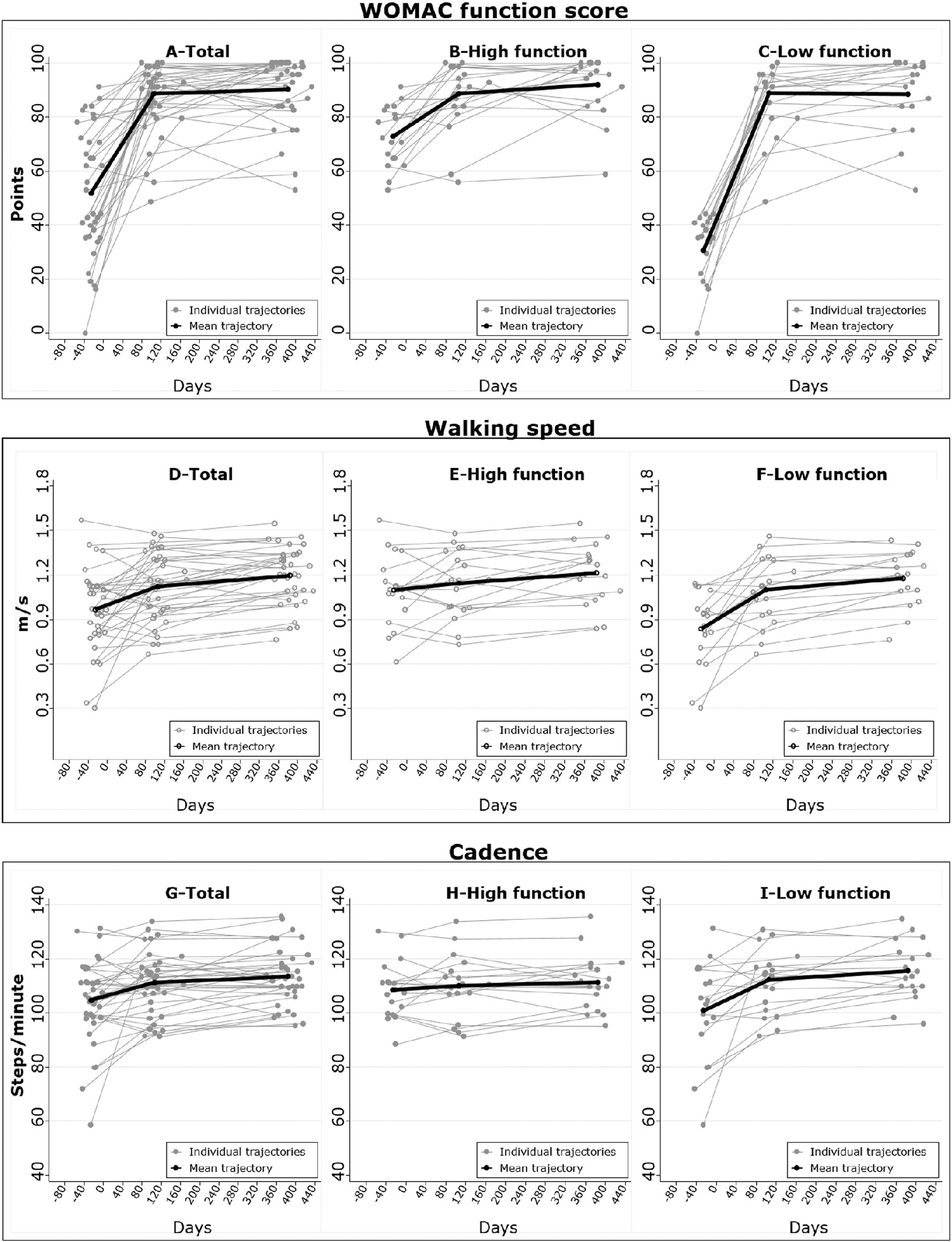 Assessment Of Physical Function Following Total Hip