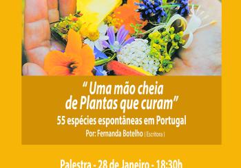 """Palestra dia 28 de Janeiro – """" Uma mão cheia de plantas que curam, 55 espécies espontâneas em Portugal. """""""