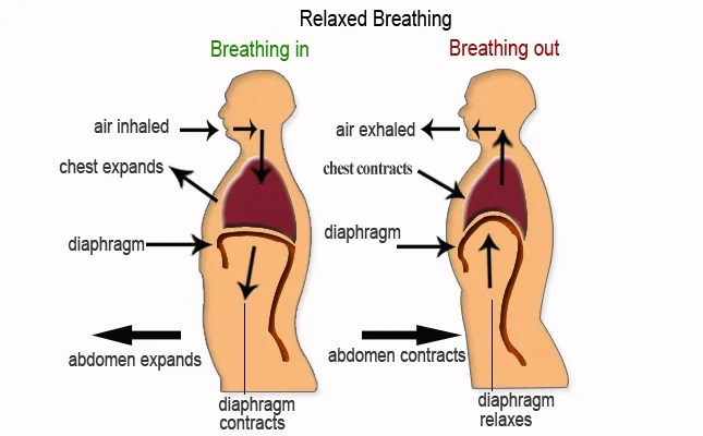 breathing diagram psd