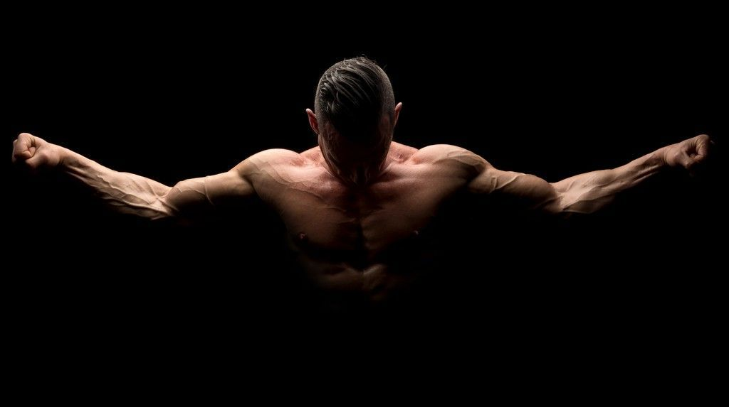 brazos, protesis de triceps