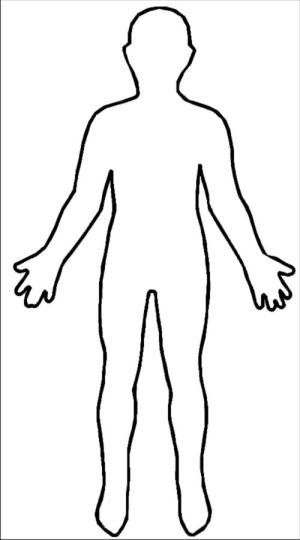 Human Body Diagram Blank  ClipArt Best