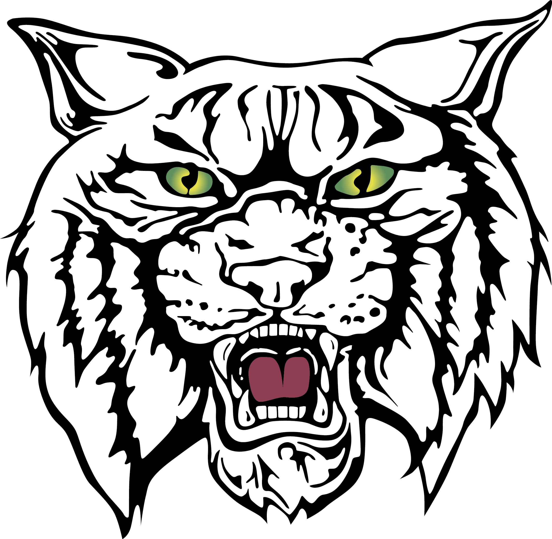 Wildcats School Logo