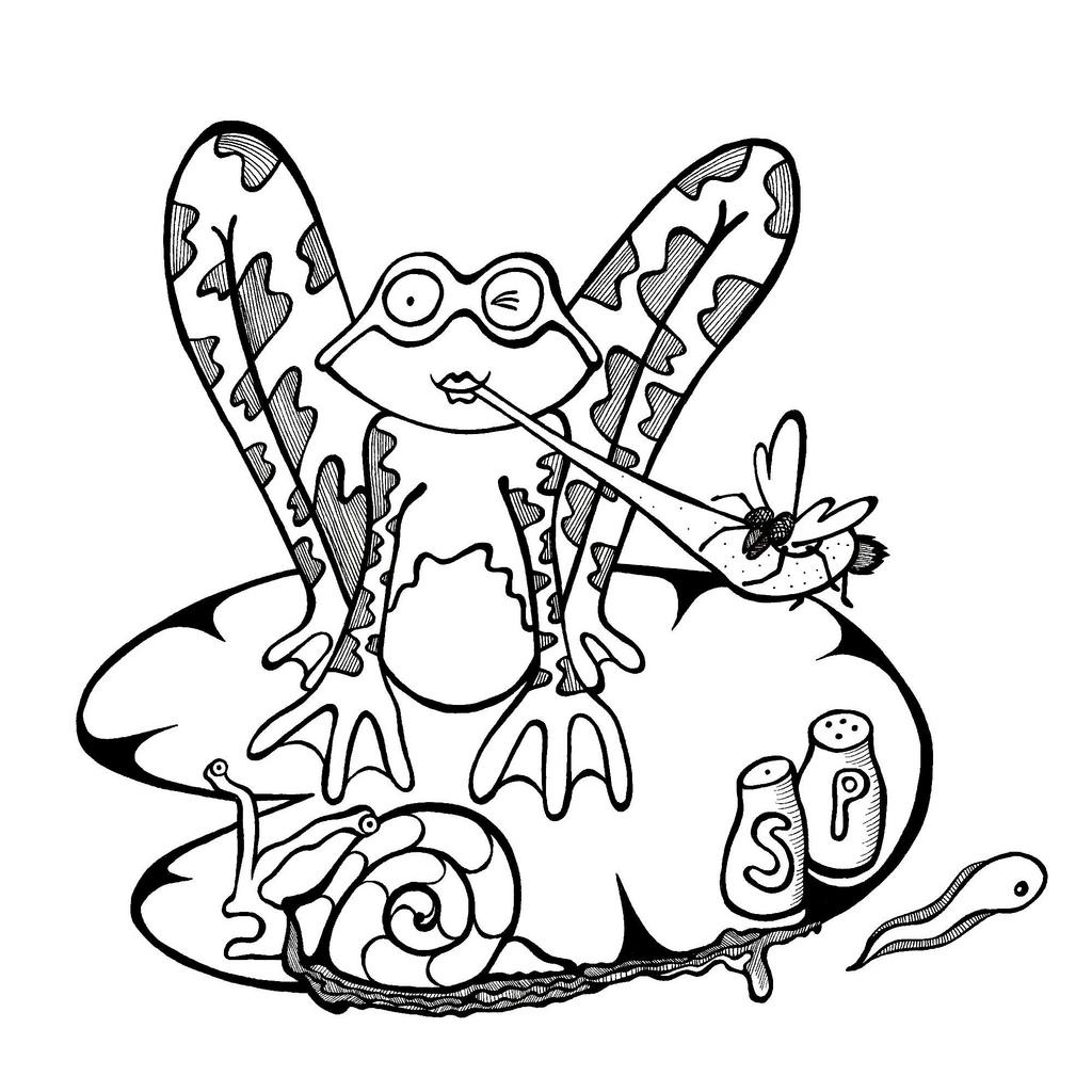 Snail Drawing