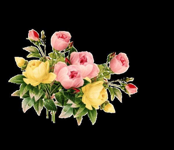 Vintage Flower Png - ClipArt Best
