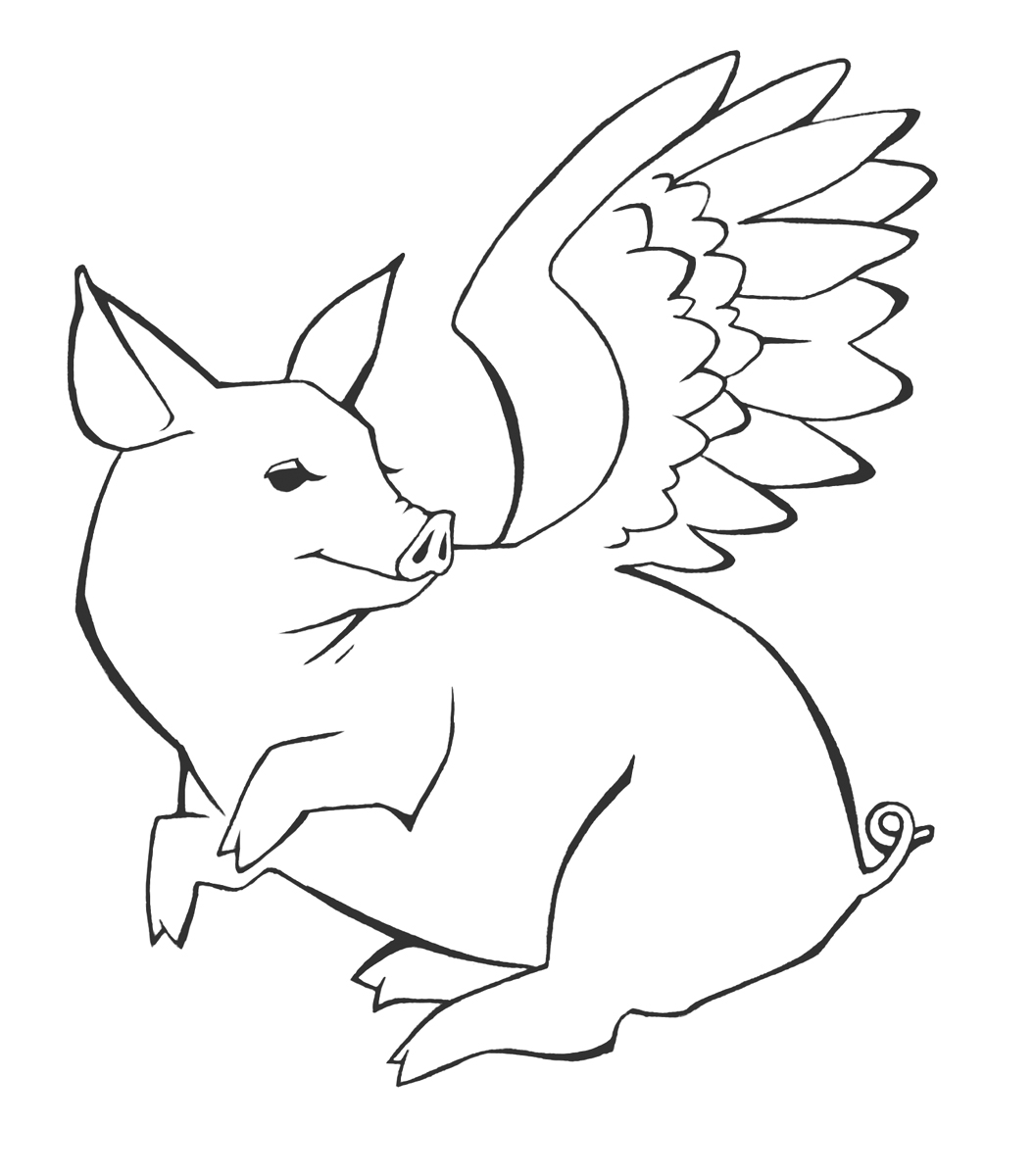 Drawing Flying Pig