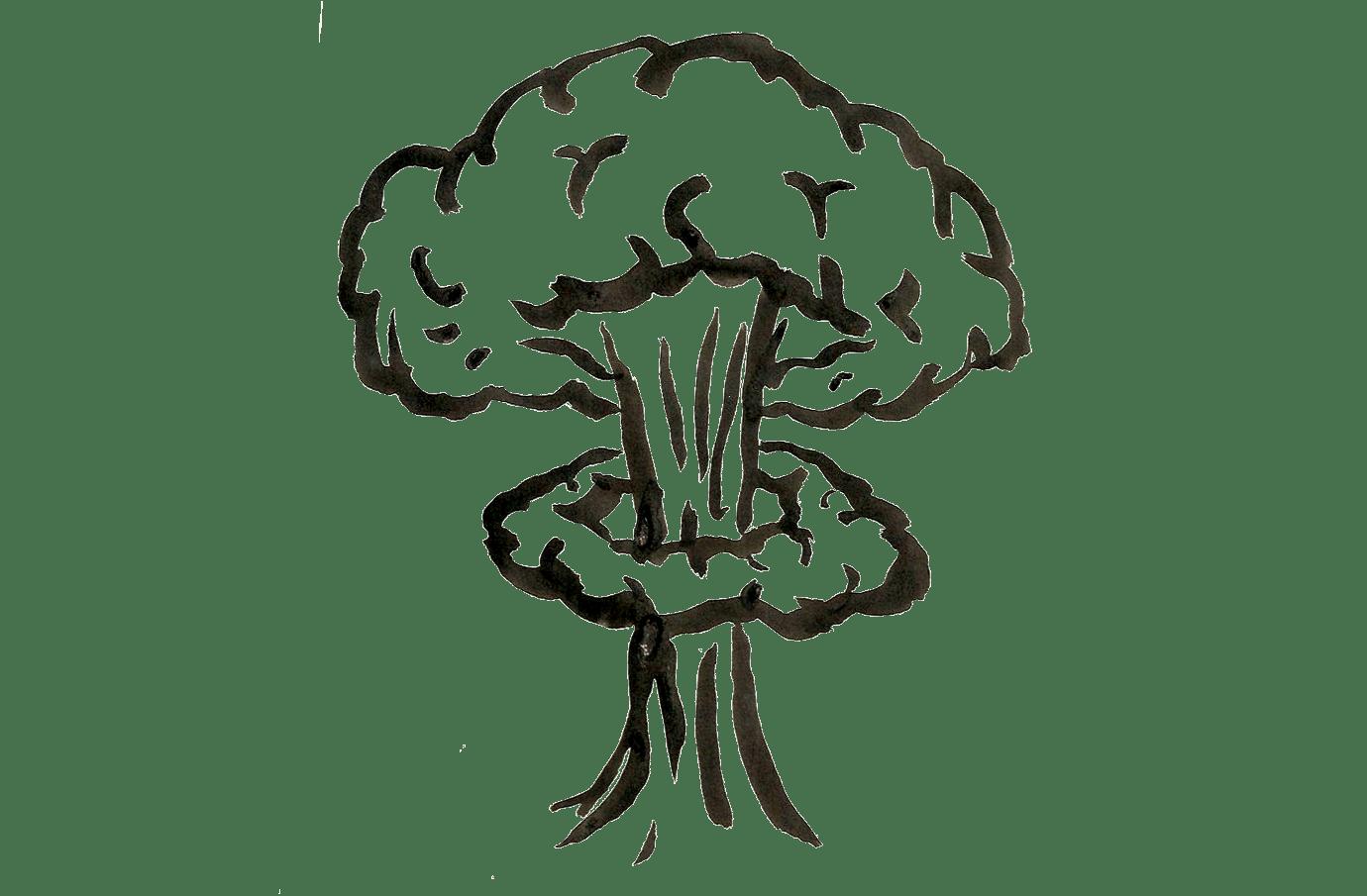 Draw Atom Explode