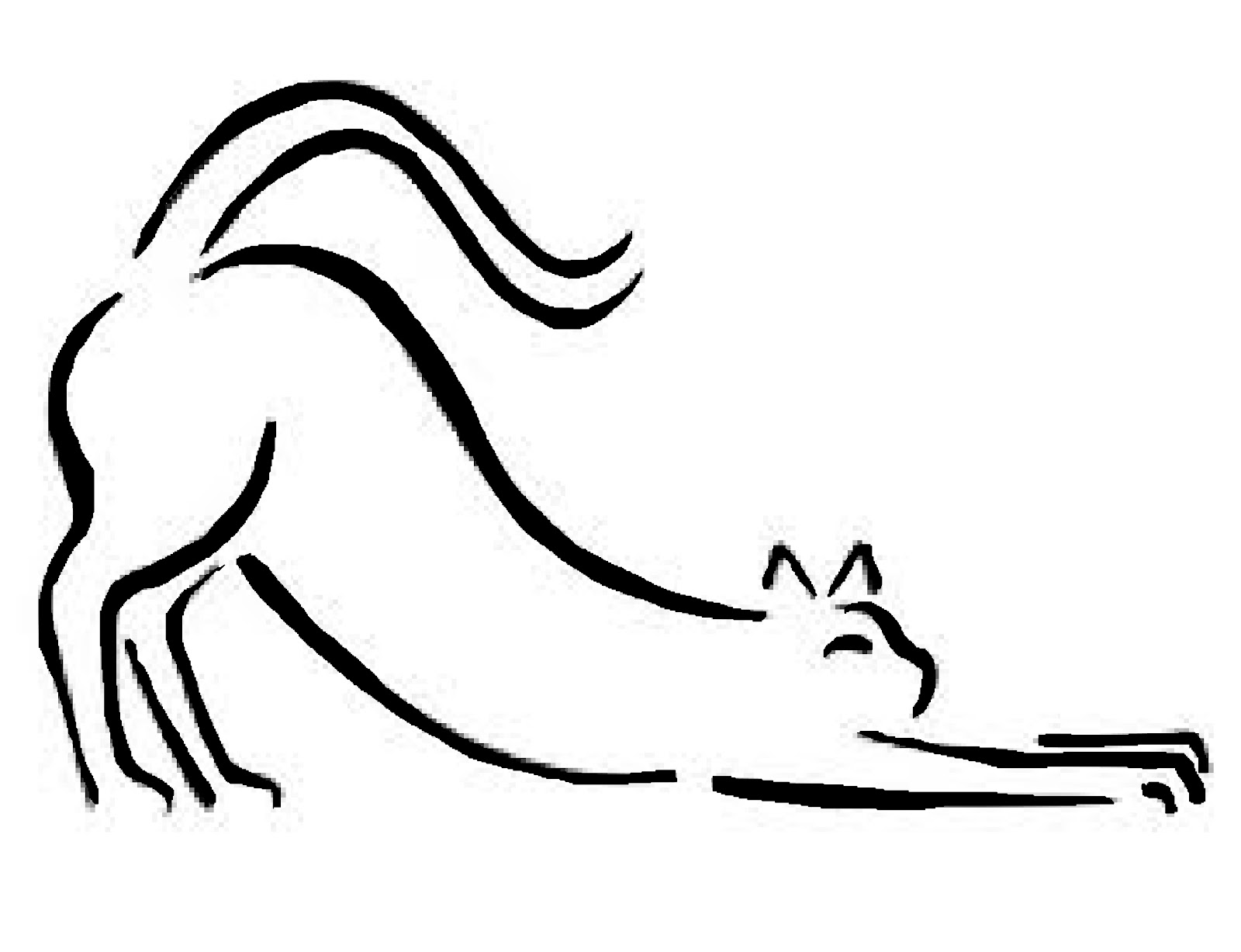 Stretching Cat Drawing
