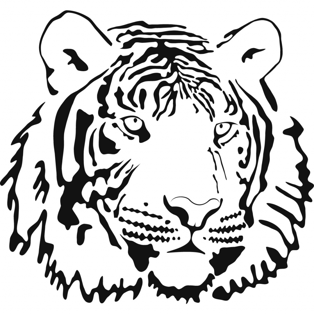 Tiger Outline Drawing