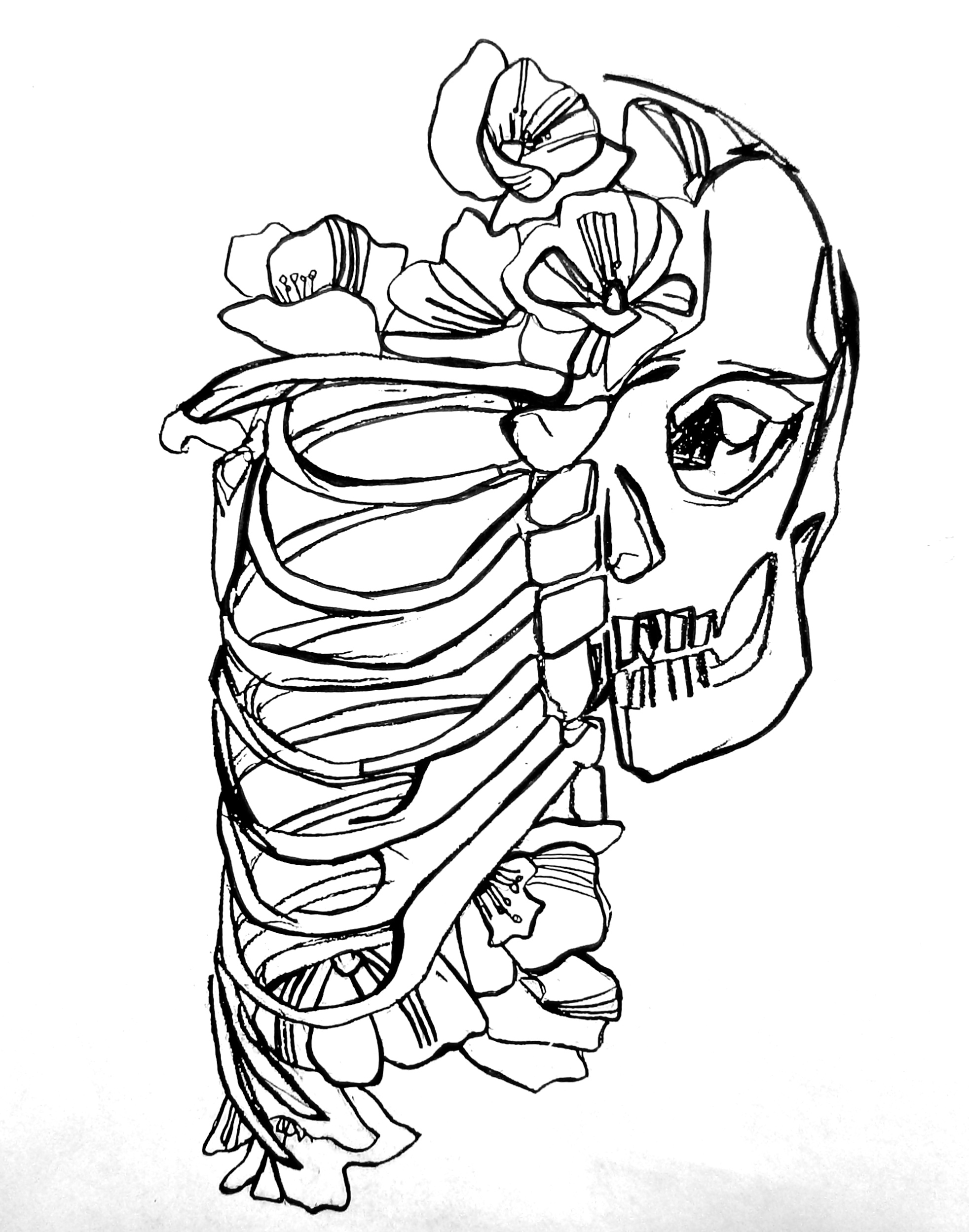 Rib Cage Drawing Tumblr
