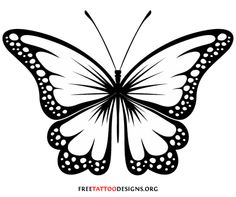 Black And White Butterfly Clipart Images Clipart Best Clipart Best