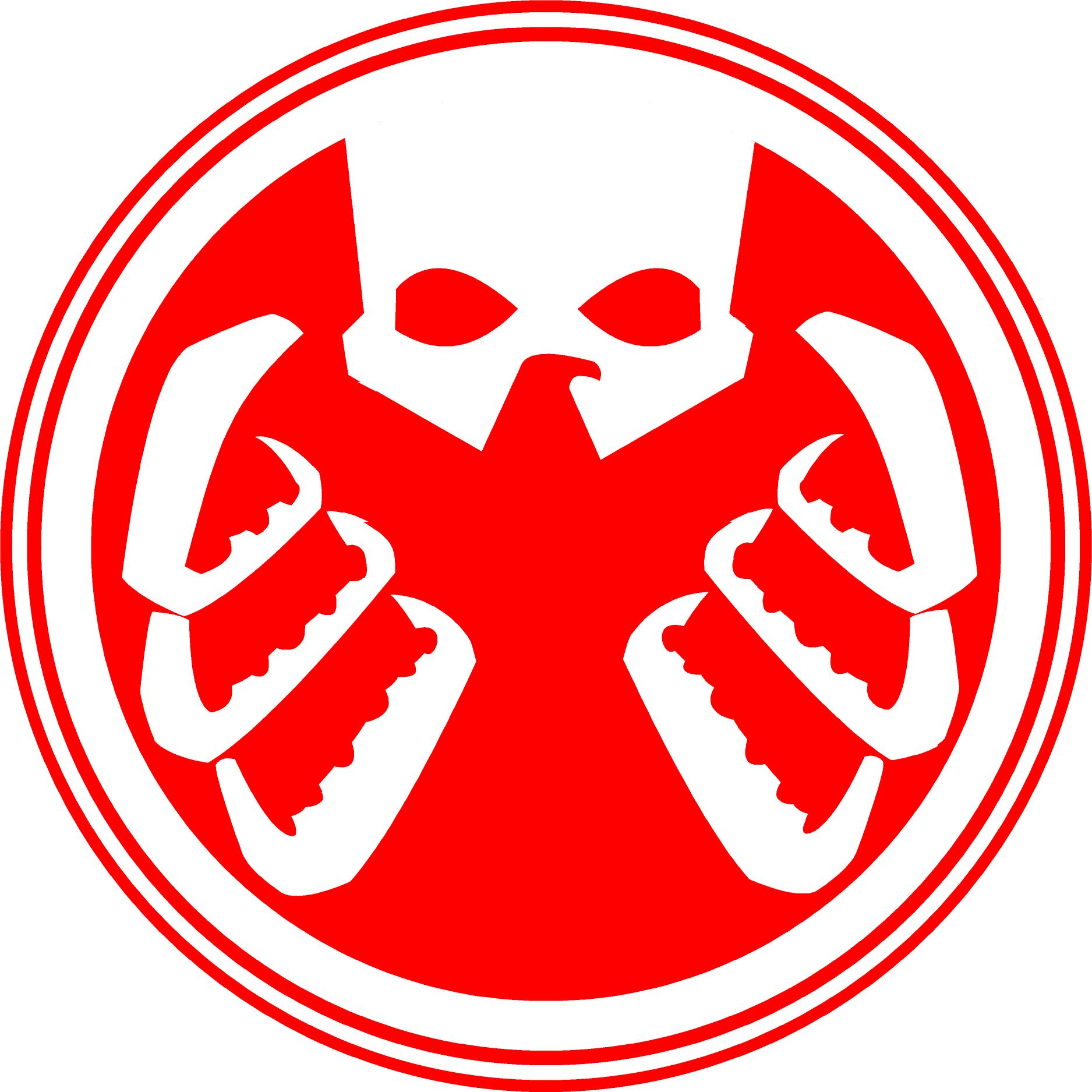 Computer Privacy Shield